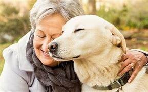 Elderly Woman With Companion Pet